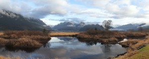 First Prize (Colour): Pitt River Autumn Morning - Jerrett Gerke (Lantzville)