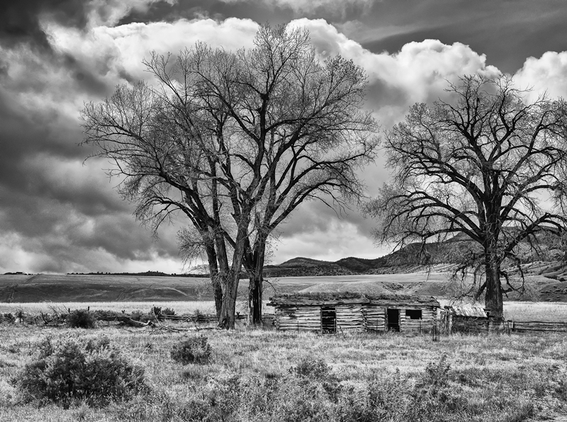 Along Highway 287 © Kevin McGuinness