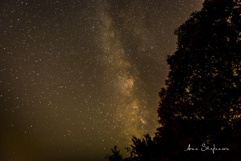 Milky Way #1 © Ann Stefanson