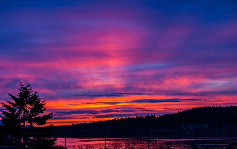 Dawn Creeping In © Betty Todd