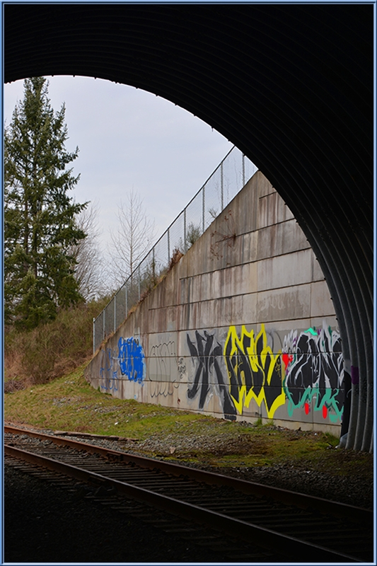 Open to Graffiti © Lindsey Woods
