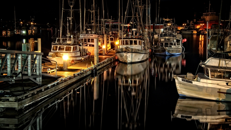 First ~ June 2015 ~ Fleet Reflections © Erika Nadon